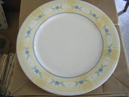 Pfaltzgraff Summer Breeze Pattern Replacement Dinner Plate - $15.83