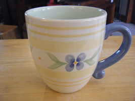 Pfaltzgraff Summer Breeze 16 oz. Coffee or Tea Mug - $11.87