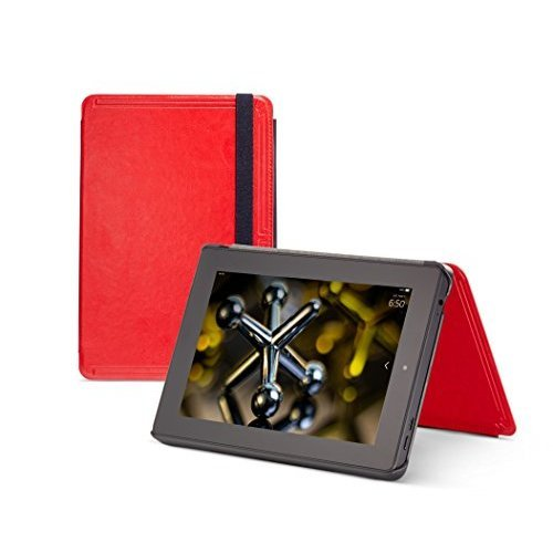 Amazon Kindle Case: 1 customer review and 34 listings