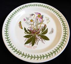 """Portmeirion BOTANIC GARDEN Christmas Rose Dinner Plate 10.5"""" England - $64.35"""