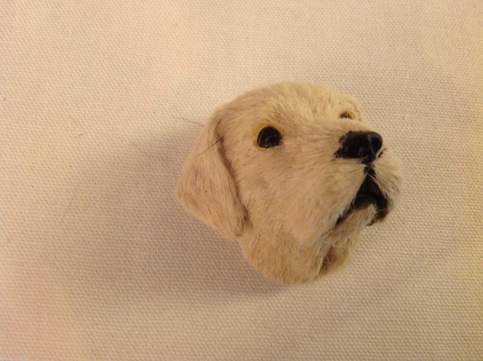 Yellow labrador  dog  furry refrigerator magnet in 3D
