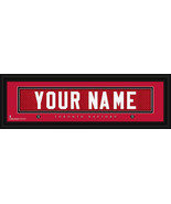 Toronto Raptors Personalized Jersey Nameplate Framed Print - $39.95