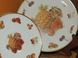 "Winterling Bavaria Plate 7.75"" & Saucer Germany Pineapple Fruit Nut Gold Harvest - $13.49"