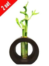 Set of 2 Live Spiral 3 Style Lucky Bamboo Plant Arrangement with Ceramic Vase... - ₨1,857.63 INR