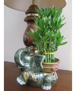 "Jumbo Size Elephant Ceramic Vase with 3 Tier 4"" 6"" 8"" Quality Lucky Bamb... - ₹2,630.61 INR"