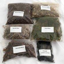 Terrarium/Fairy Garden Kit with 10 Plants - Create Your Own Living Terra... - $705,40 MXN