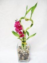Live Heart Style Lucky Bamboo Arrange w/ Glasses Vase Pebble Silk... - £11.66 GBP