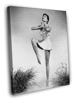 Cyd Charisse Female Dancer Fred Astaire Vintage... - $29.95