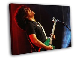 Stevie Salas American guitarist 30x20 FRAMED CANVAS - $19.95