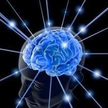 Iq 700 X Spell Super Memory & Smart Perfect 4 Studies & Training & Free Gift! - $16.00
