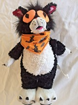 Black Cat Halloween Gemmy Singing Dancing Animated Crazy Fast Cat Pumpki... - £9.06 GBP