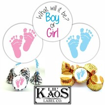 108 Gender Reveal Stickers Labels Party Baby Ki... - $3.99