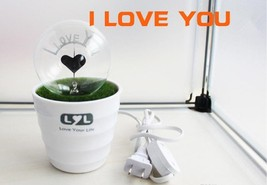 Romantic Love Potted Plant Night Lights - One Item w/Random Color and Design image 1