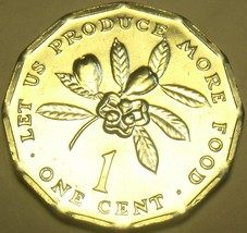 Gem Unc Jamaica 1977 F.A.O. Cent~Let Us Produce More Food~12-Sided~Free Shipping - $2.93
