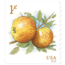 2016 1c Albemarle Pippin Apples, Coil Scott 5037 Mint F/VF NH - $0.99