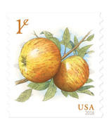 2016 1c Albemarle Pippin Apples, Coil Scott 5037 Mint F/VF NH - €0,79 EUR