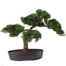 Cedar Bonsai Tree 16 In Free Shipping Nearly Natural 4106 - $56.99