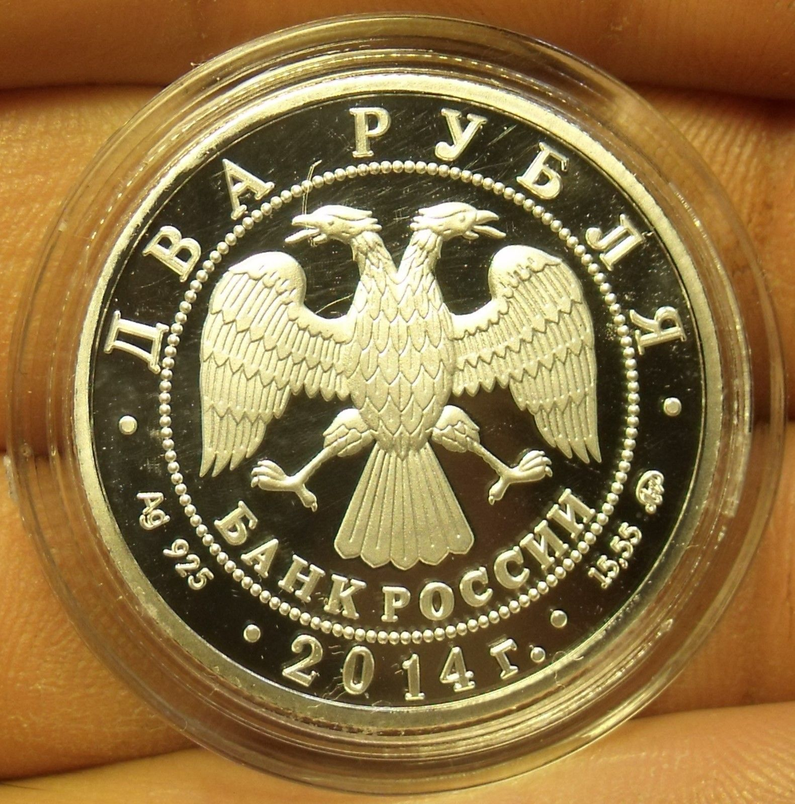 Fantasy Silver-Plated Proof Russia 2014 2 Roubles~Soldatov Sheatfish~Free Ship