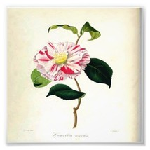Vintage Botanical Pink Flower Printable Digital... - $1.49