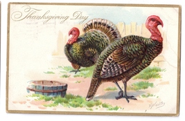 Thanksgiving Turkeys Vintage Tuck Postcard Artist Signed RJ Wealthy Embo... - $4.99