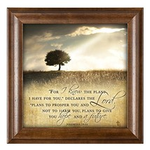For I know the Plans I Have For You Jeremiah 29:11 12 x 12 Woodgrain Fra... - $34.49