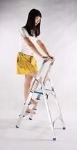 Folding 3-Step Aluminium Alloy Ladder with aluminium Steps, Silver Finis... - $45.49