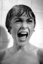 Psycho Poster, Shower Scene, Psychological Thriller, Alfred Hitchcock si... - $19.85