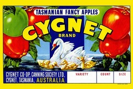 Cygnet Tasmanian Fancy Apples 20x30 Poster - $24.95