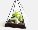 Geometric Style Tabletop  Glass Terrarium Window Sill Box Succulent Flowerpot Py