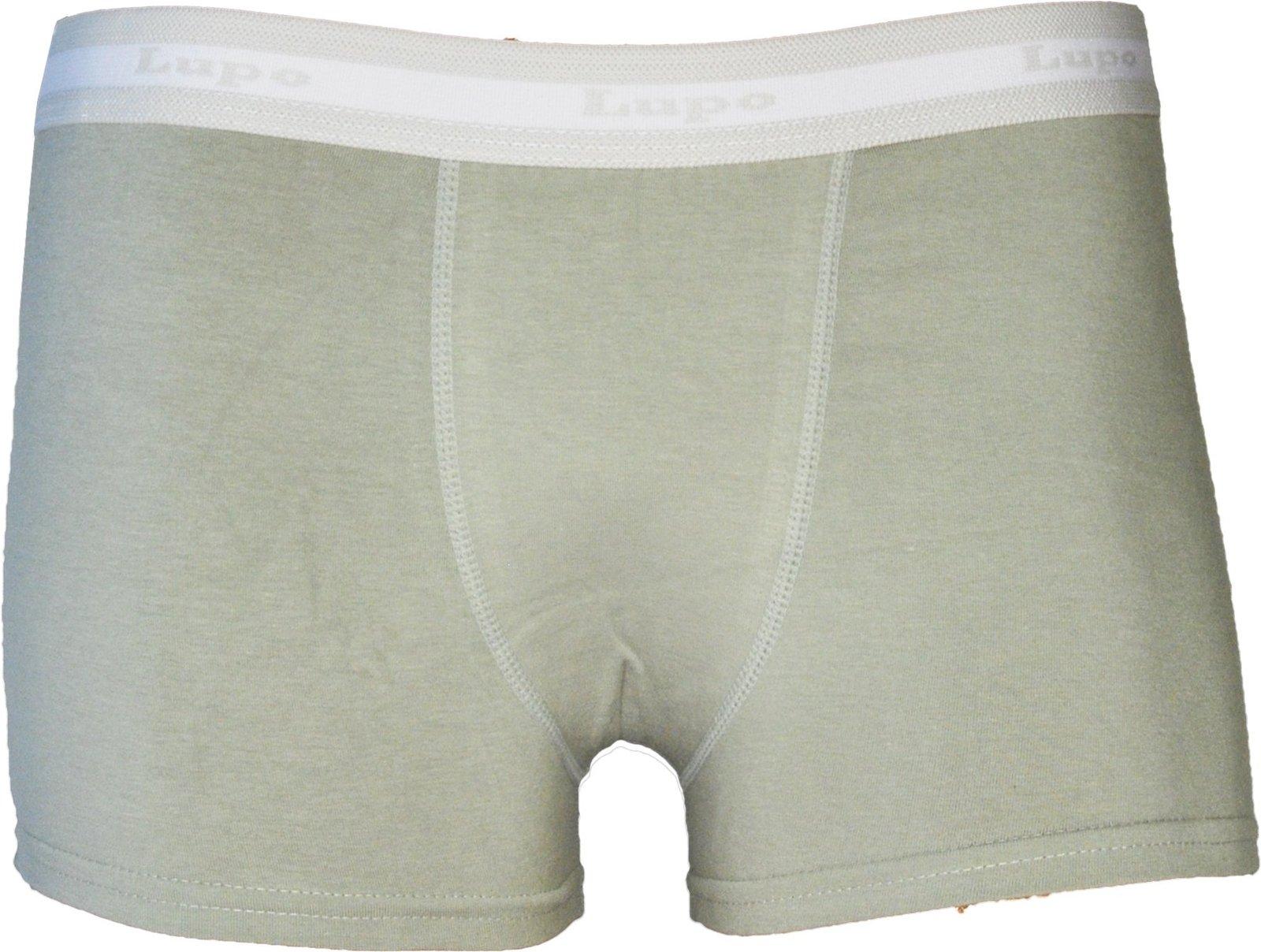 Lupo Mens Horizonal Stripe Fashion Stretch Cotton Boxer Briefs