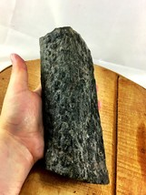 Large Stigmaria - fossil of the roots of Lepido... - $33.85