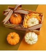 Silicone Mold DIY 3D Pumpkin Halloween Handmade Soap Candle or Cake Deco... - £15.19 GBP