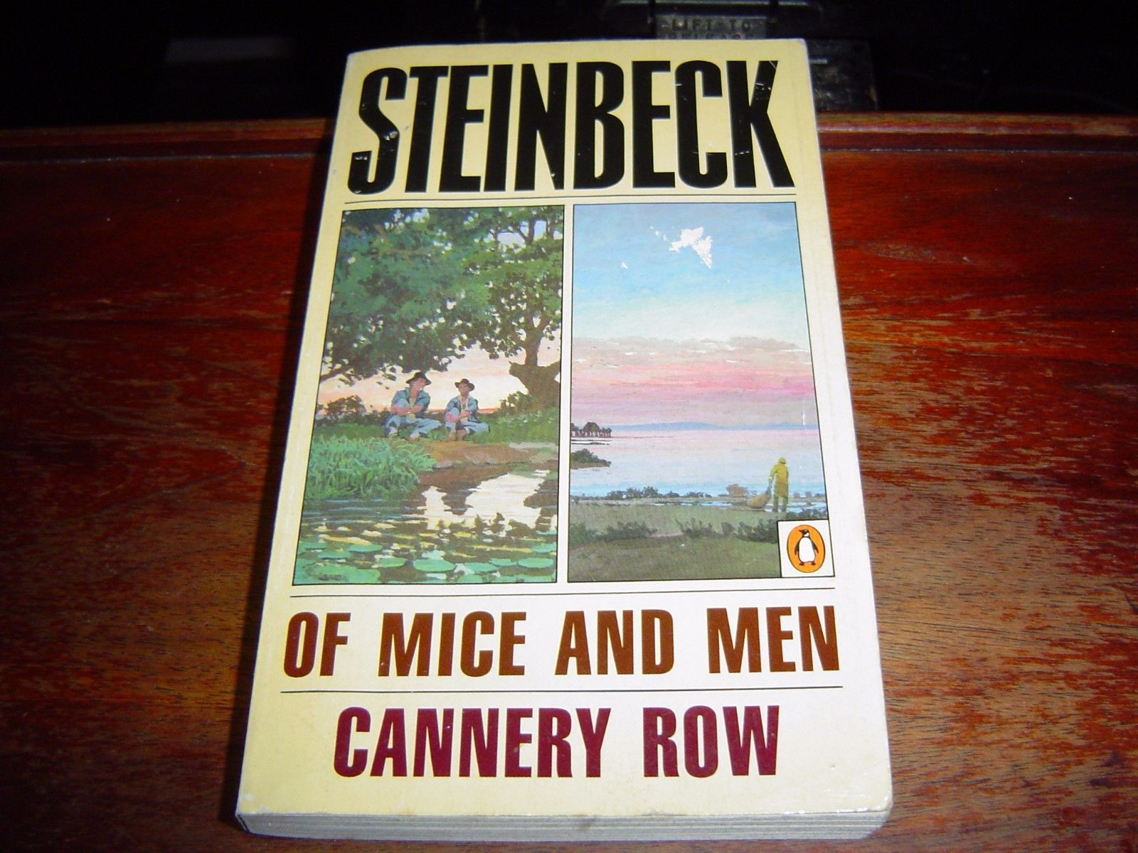 a short analysis of cannery row by john steinbeck Cannery row is a novel written by the famous american author john steinbeck and published in 1945 the novel was adapted into a film in 1982 starring nick nolte.