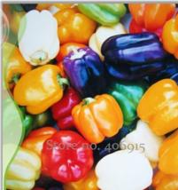 Best Price 25 Seeds Colorful Sweet Pepper Pepper,Diy Vegetable Seeds IWSC003 Dg - $5.00