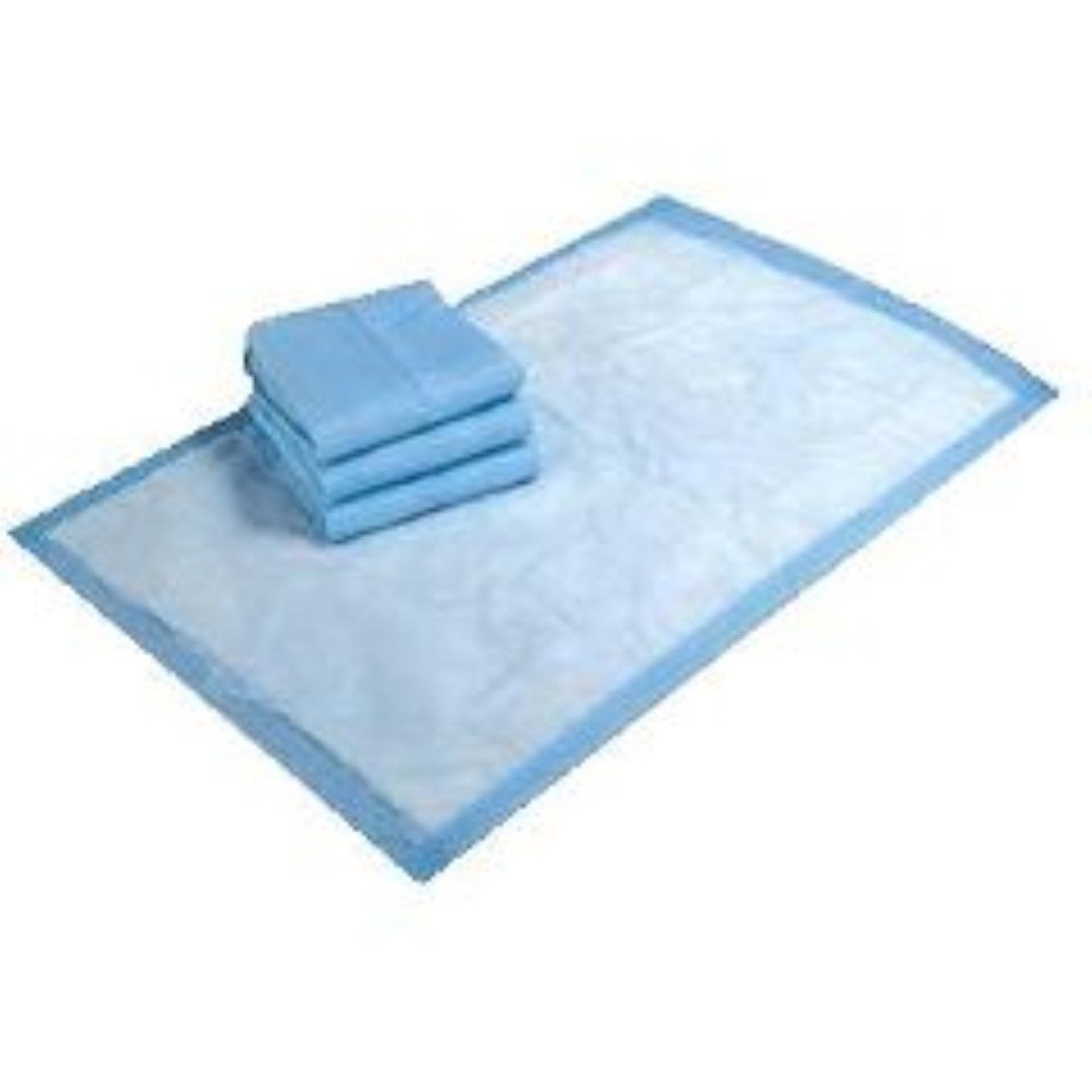 "Primary image for Medline Protection PLUS Economy Incontinence Underpads 23x24"" 200 pads"