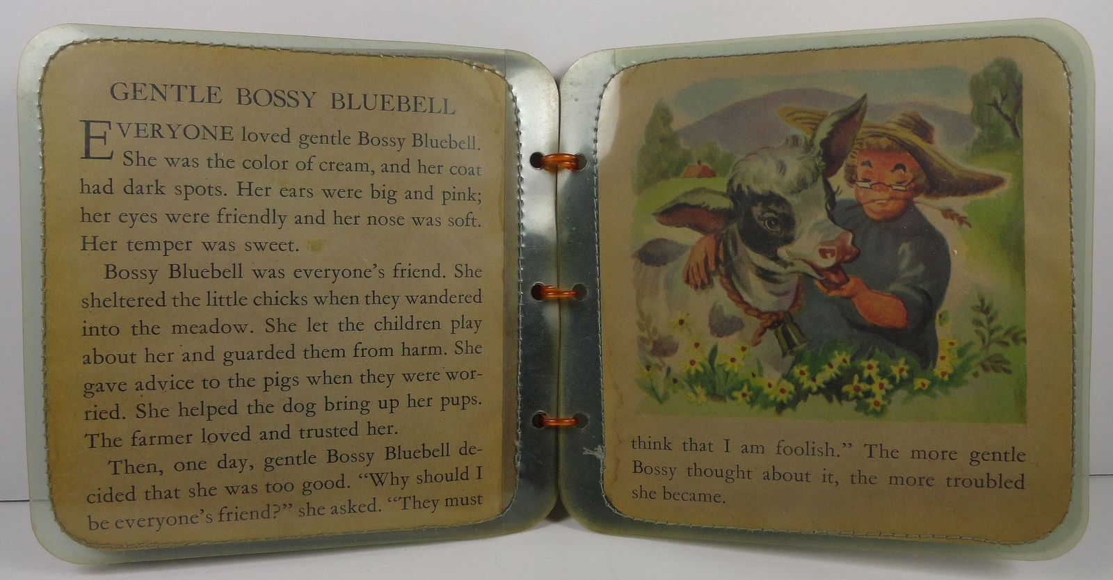 Greedy Jane Gentle Bossy Bluebell  A Peggy Brooks Book