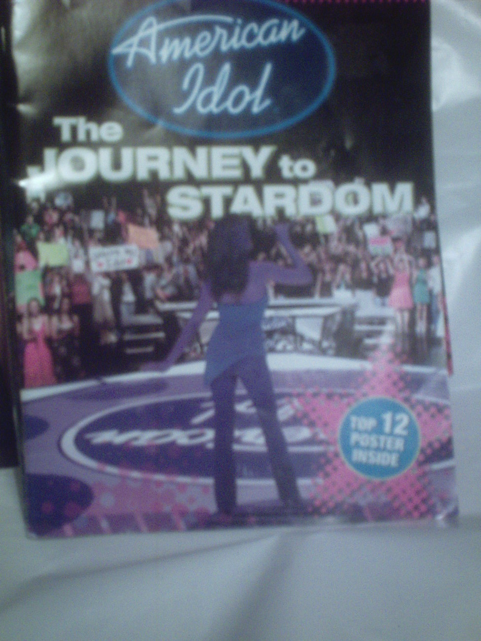 American Idol The Journey to Stardom