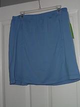 Allyson Whitmore Golf Skorts Size Pl Stretch Bogey Blue Nwt - $17.94