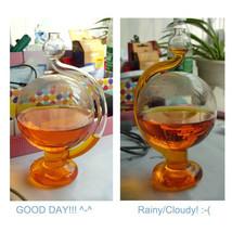 Funny Storm Glass Barometer+Weather Forecast Bottle Rain or Shine Bottle... - $12.98