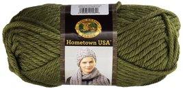 2 Skeins Lion Brand Yarn 135-176 Hometown USA Y... - $12.00
