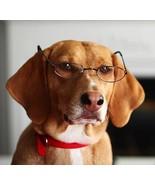 Dog wearing glasses clip art  2  thumbtall