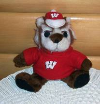 "University of Wisconsin Badgers Fans Plush 9"" Bucky Mascot in Removable ... - $6.79"