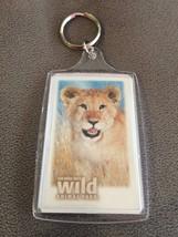 San Diego Zoo WIld Animal Park Lion Keychain - $4.95