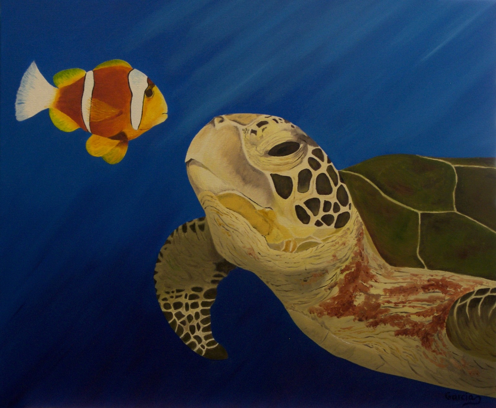 Turtle.fish.paint