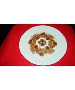 CORELLE UNUSUAL BROWN TEST PATTERN RARE DINNER PLATE FREE USA SHIP - $28.04