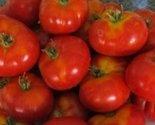 41r3swqdxyl. sl1500  thumb155 crop