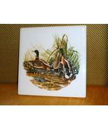 "Audubon Mallard Duck Bird Vintage Print Ceramic Tile 6 1/8"" x  6 1/8"" - $11.88"