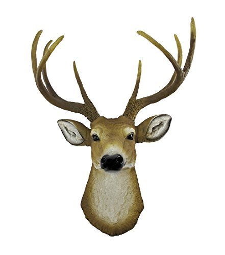 Private Label 8 Point Buck Deer Head Bust Wall Hanging