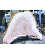 Live Edge Pecan wood slab #5 for carving, wood burning, painting, signs,... - $74.98