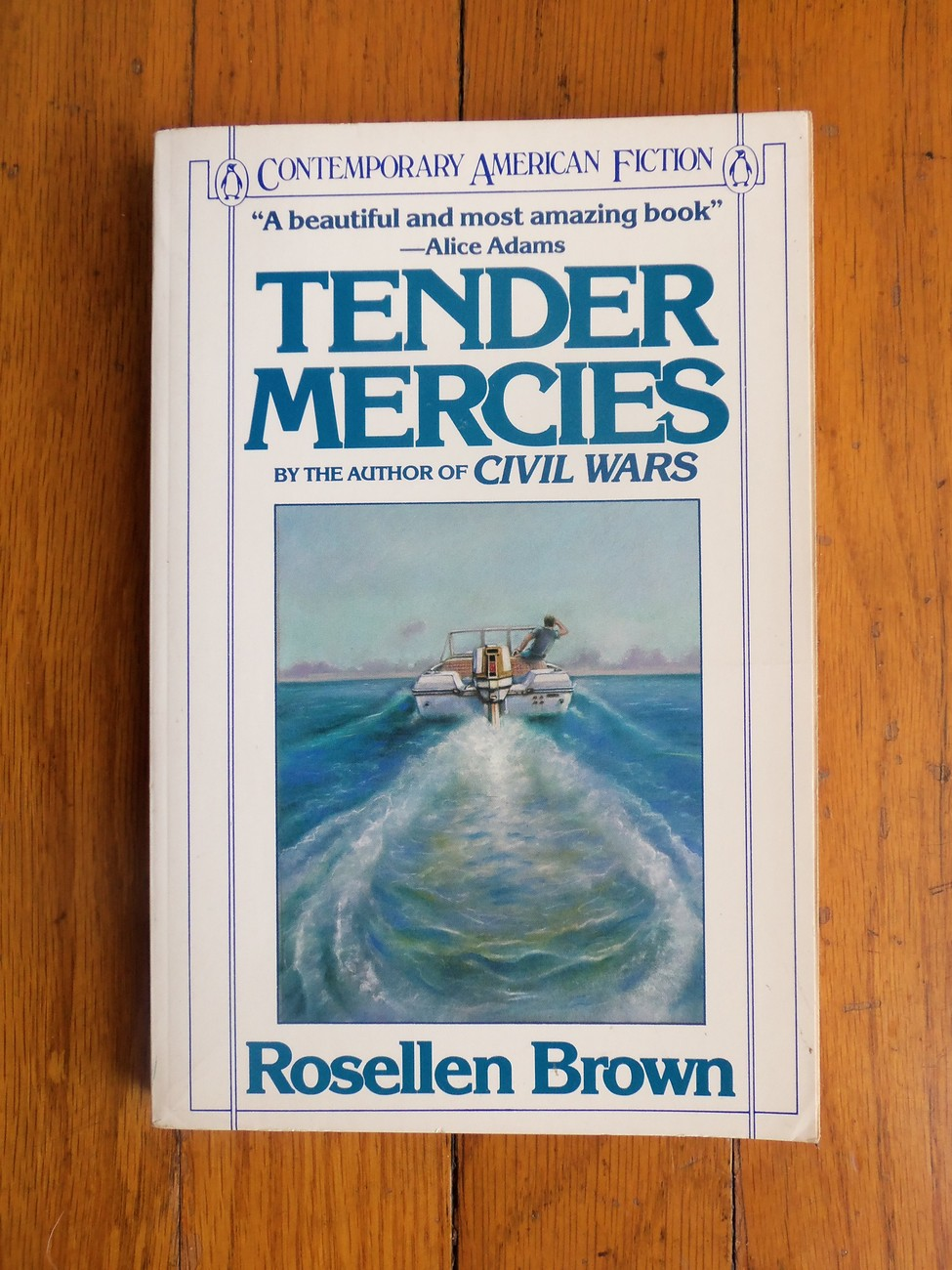 Tender Mercies by Rosellen Brown